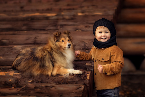Фотосессия-с-собакой