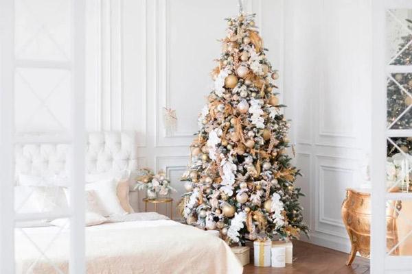 Студия-Мимика-зал-Люкс-Для-Новогодней-семейной-фотосессии
